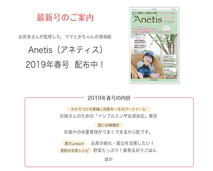 anetis201901_04